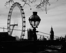 The London Eye From Across the Thames