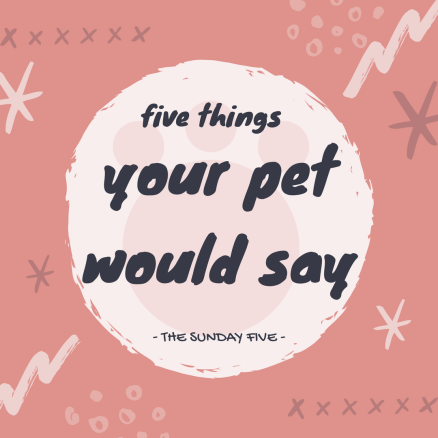 Five things your pet would say